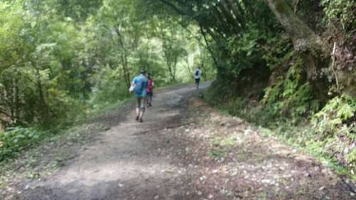 ikomayama trail2