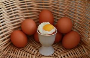 Eggs (2)