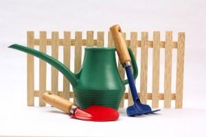 枝豆を育てるなら家庭菜園の道具を一式そろえるだけ!