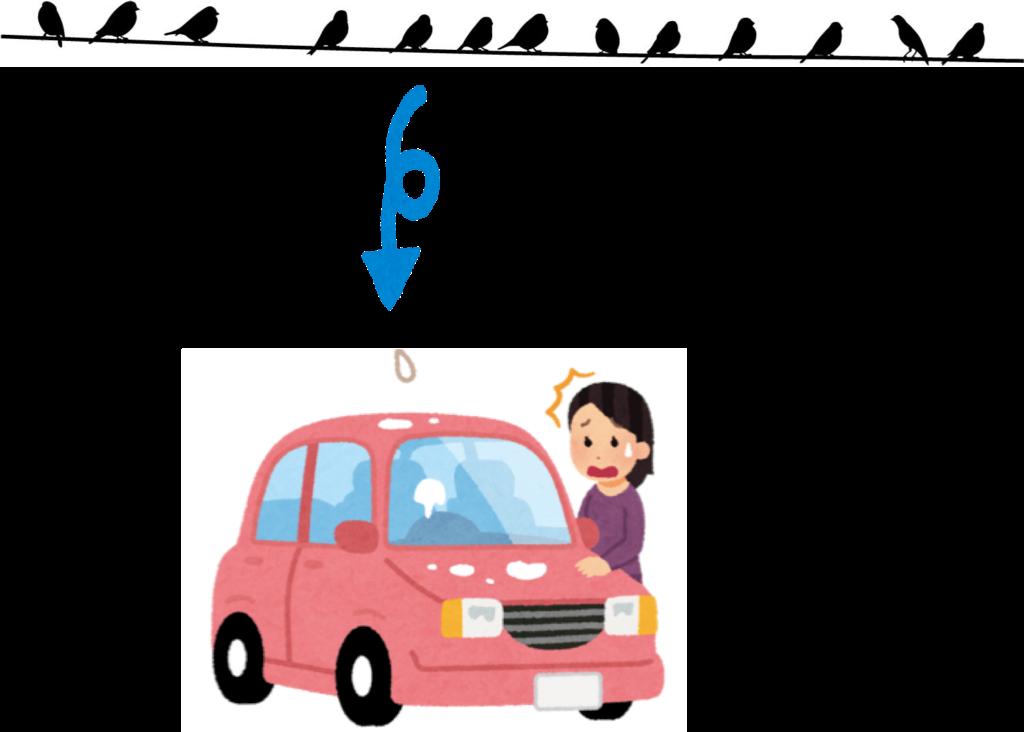 車に鳥のフンを落とされないための対策