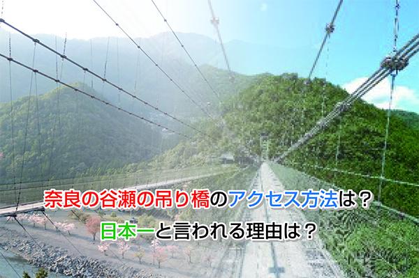 Nara Tanize Eye-catching image