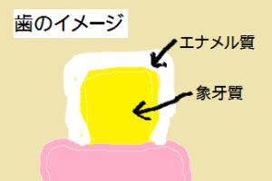 はイメージ