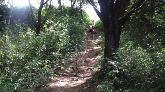 ikoma_trail_run069