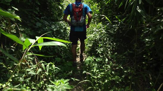 ikoma_trail_run075