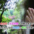 Suzumushi Temple Eye-catching image