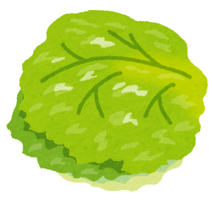 vegetable_lettuce
