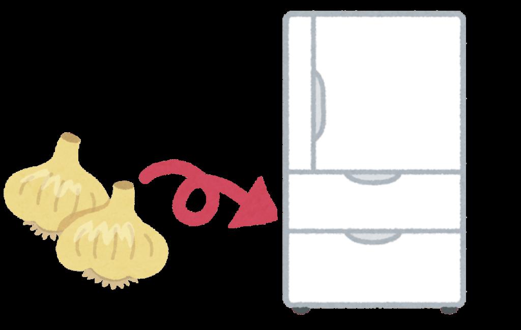 にんにくを冷蔵保存するイラスト