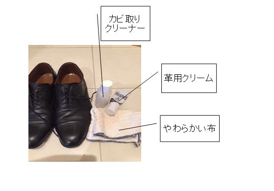 靴 カビ 取り 革靴 準備