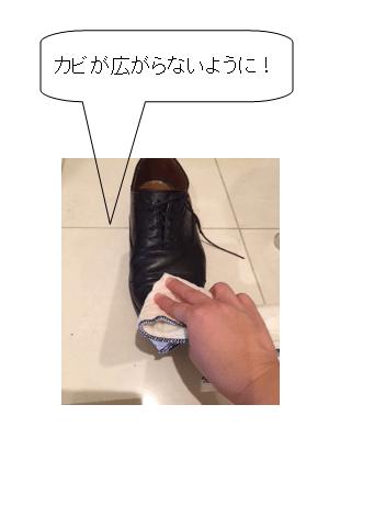 靴 カビ 取り 拭く