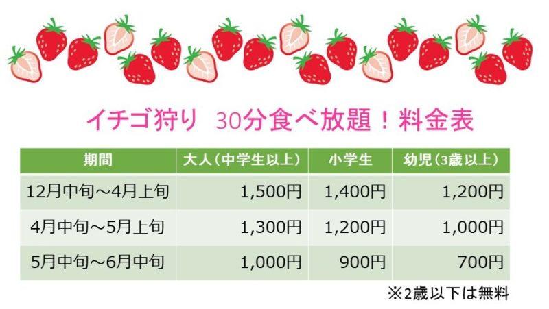 イチゴ狩り料金表