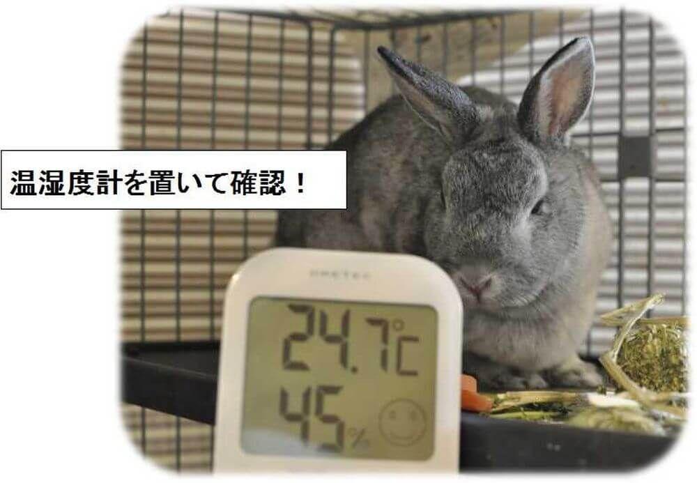 うさぎ 暑さ対策 温湿度計